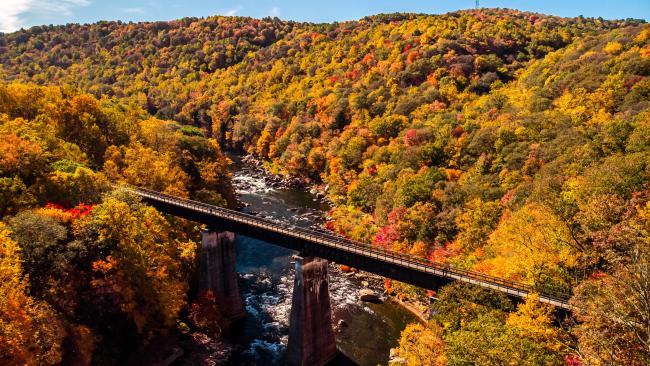 Ohiopyle GAP Fall