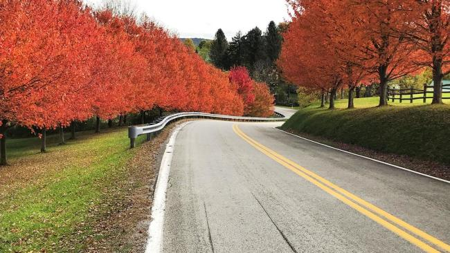 Fall foliage makes its way to Pennsylvania