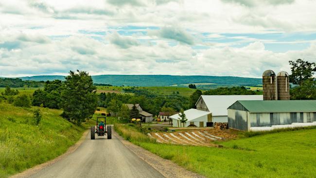 Carol Saylor, Elk Lick Township, Somerset County, Amish