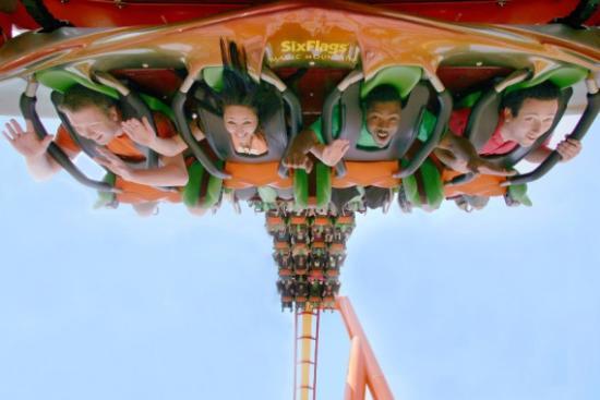 Tatsu Coaster at Six Flags Magic Mountain