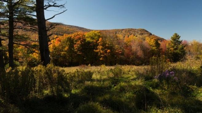 Spotlight: The Catskills