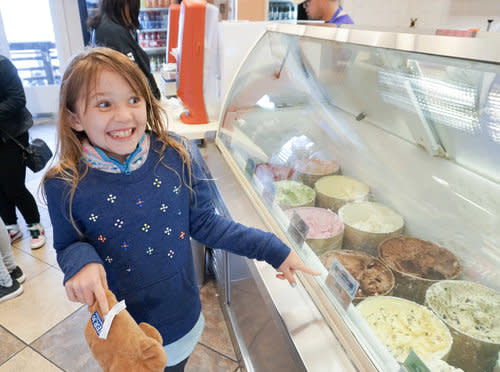 Picking a Flavor at Dryer's Ice Cream
