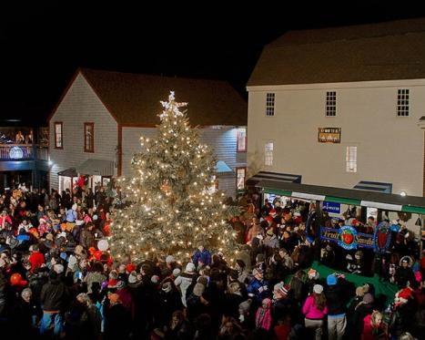 Bowen's Wharf Tree Lighting