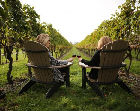 Guide to Vineyards & Breweries