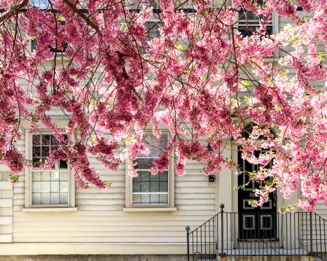 11 Events for Spring