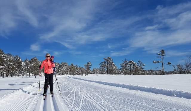 Cross country skiing in Gjerstad