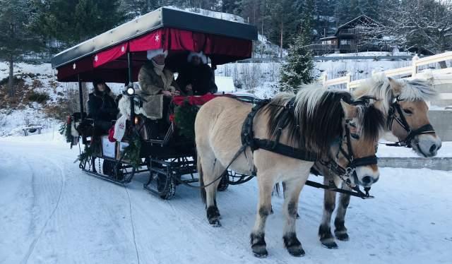 Kanefart med hest på Eikerapen Gjestegard