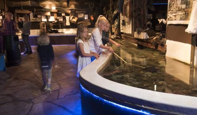 Children inside Risør Akvarium