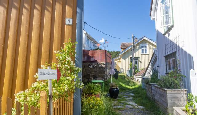 Kamperhaugveien til Branntårnet Galleri i Risør