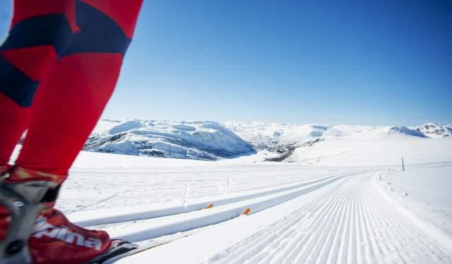 Ski tracks in Hovden