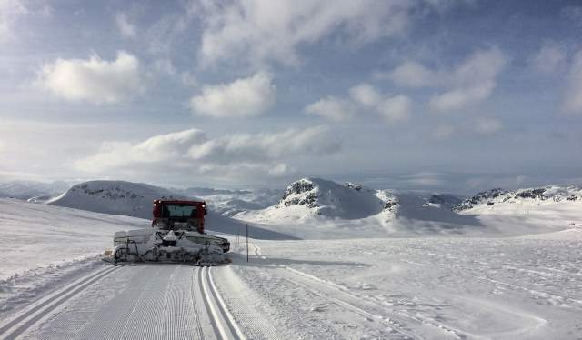 Tracking in the mountains of Hovden