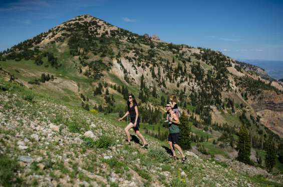 Little Cottonwood Canyon is the perfect place to take your family on a hike