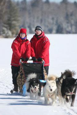 Wintergreen Dogsledding
