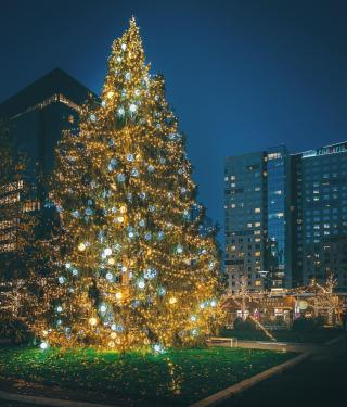 Christmas Events December 2021 And Holbrook Ma Boston Holiday Lights Trail View The 2020 Schedule