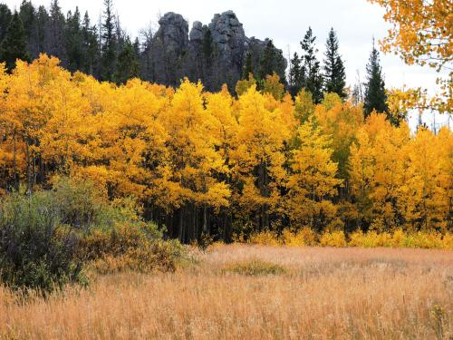 Autumn in Vedauwoo