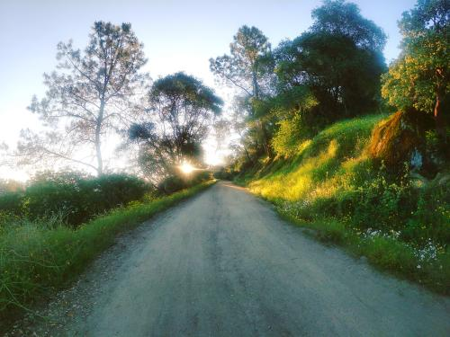 Wellbarn Fire Road