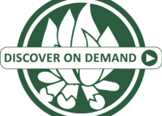 Discover on Demand