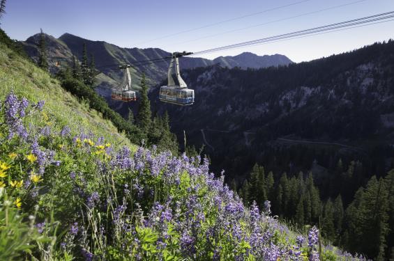 Aerial Tram at Snowbird