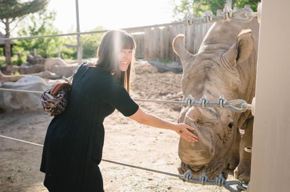Connect Pass Blog Zoo Brew Petting Rhino