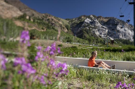 Kid on Alpine Slide at Snowbird