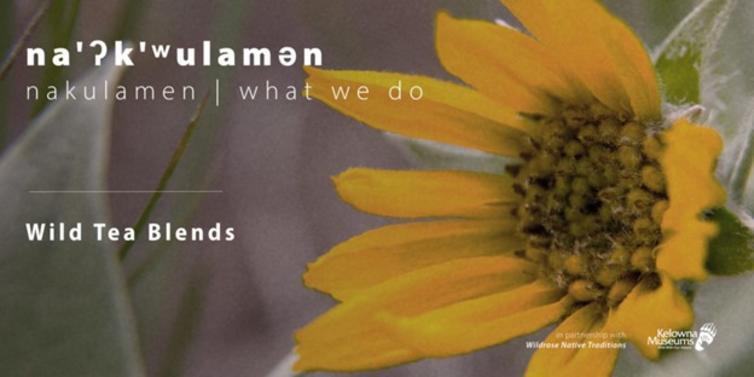 na'ʔk'ʷulamən (what we do): Wild Tea Blends,
