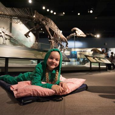 5 Chicago museum sleepovers for knowledge-hungry kids