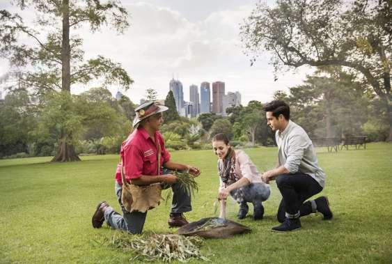Aboriginal Heritage Walk at Melbourne Gardens