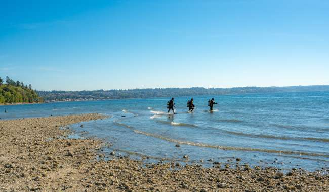 Scuba Divers at Saltwater State Park in Des Moines