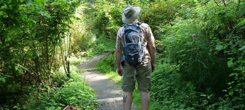 Man walking along trail surrounded by greenery