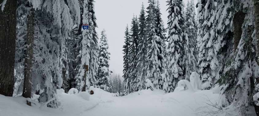 Things to know when planning a day trip to Snoqualmie