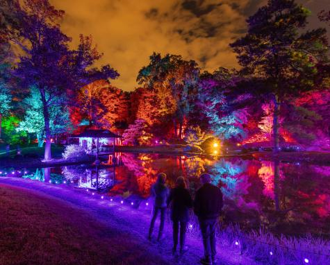 Maymont Garden Glow 2