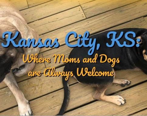 Pet-friendly Kansas City