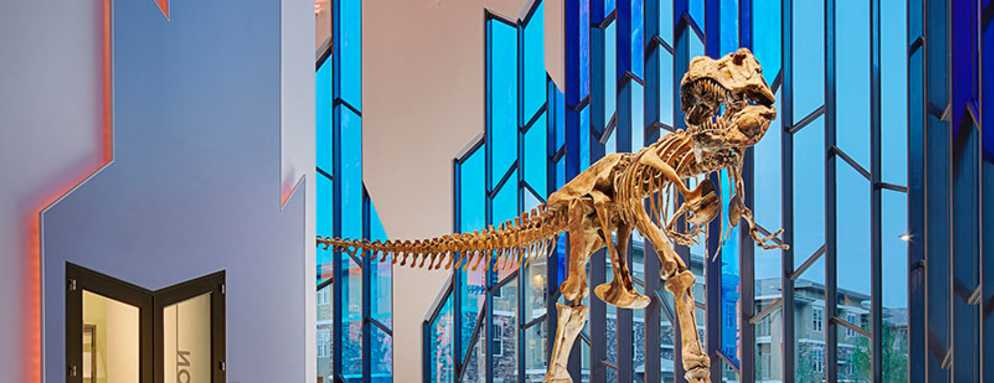 Take-a-Vacation-to-See-the-T-Rex-at-The-Museum-at-Prairiefire-in-Overland-Park