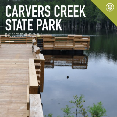 Carvers Creek State Park