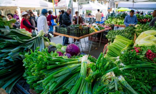The Friday's farmers market in Old Oakland is one of the best in the whole city, and the variety is not only represented in the food and fresh produce, but also in the color and flare of local characters who shop there.
