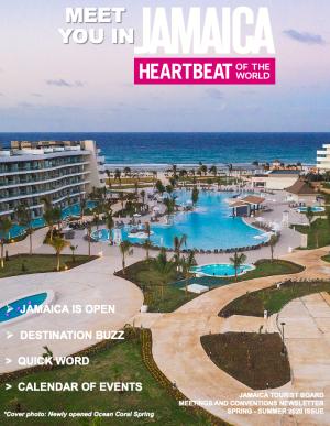 Meet You in Jamaica Spring - Summer 2020