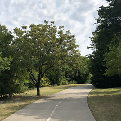 View of Caddo Trail