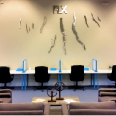 FLX Workspace