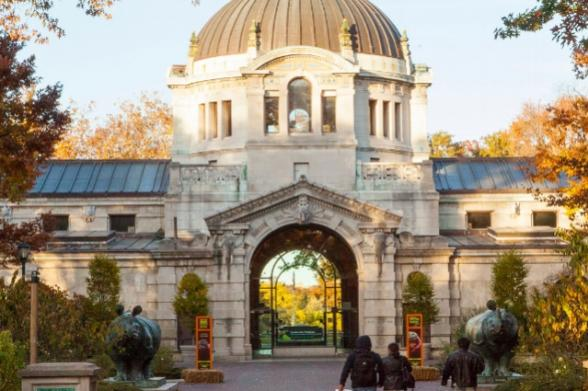 Where To Have Brunch, Halloween, October 2020, Bronx, Westchester County The Bronx | 2 Day Itinerary | Attractions, Activities