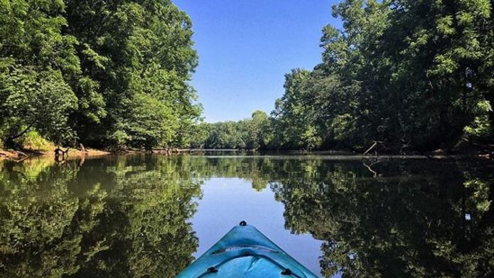 Kayak view of the water