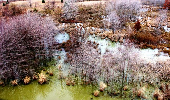 An aerial view of water and trails Greenbury Point Conservation Area.