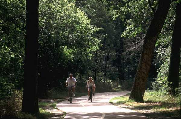 biking at River Legacy