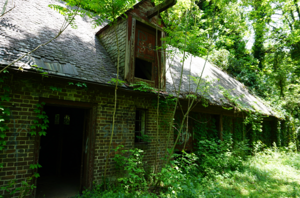 Eugenia Williams House Stables slightly overgrown with vines