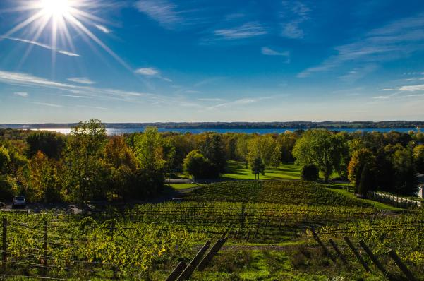 Heart and Hands Wine Company on Cayuga Lake