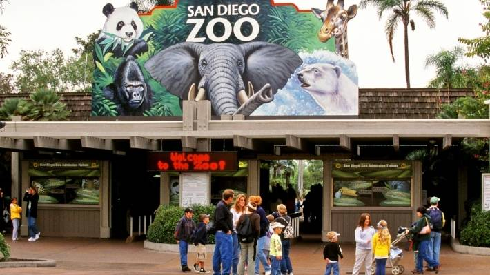 Day Trip San Diego Zoo