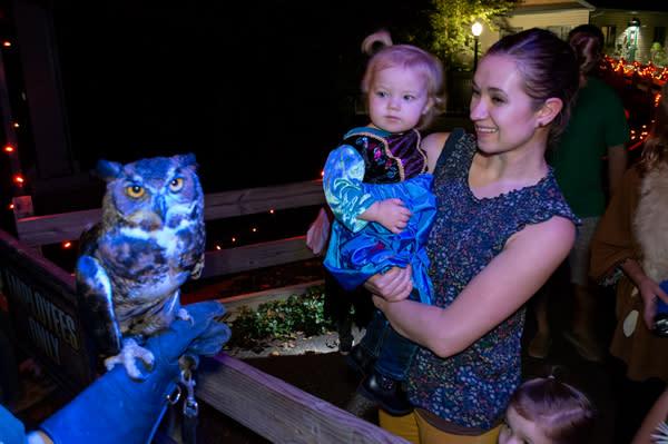 ZooAmerica Creatures of the Night