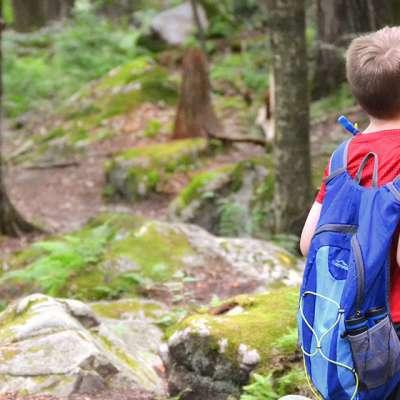 Hiking the Laurel Highlands