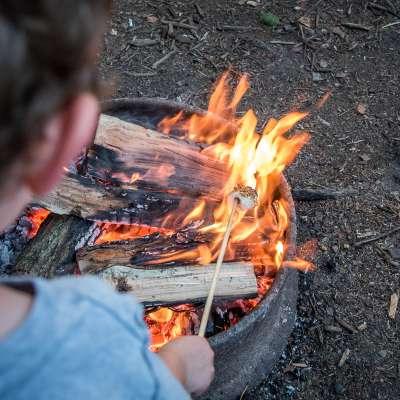 Camping Yogi Bear