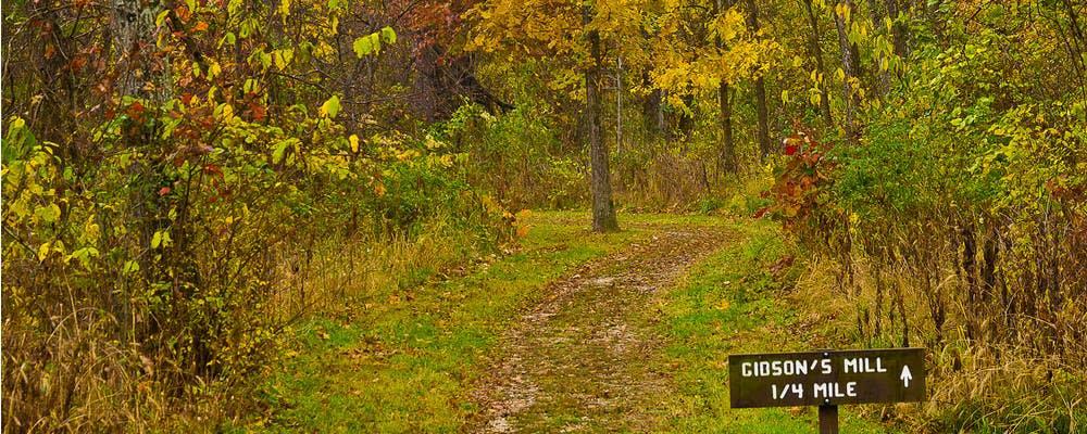 A wooded trail running through Wilson's Creek National Battlefield in Republic, Missouri