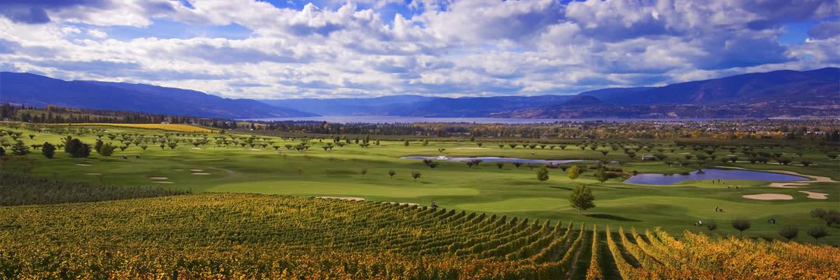 Kelowna Vineyards, Golf, and Lake